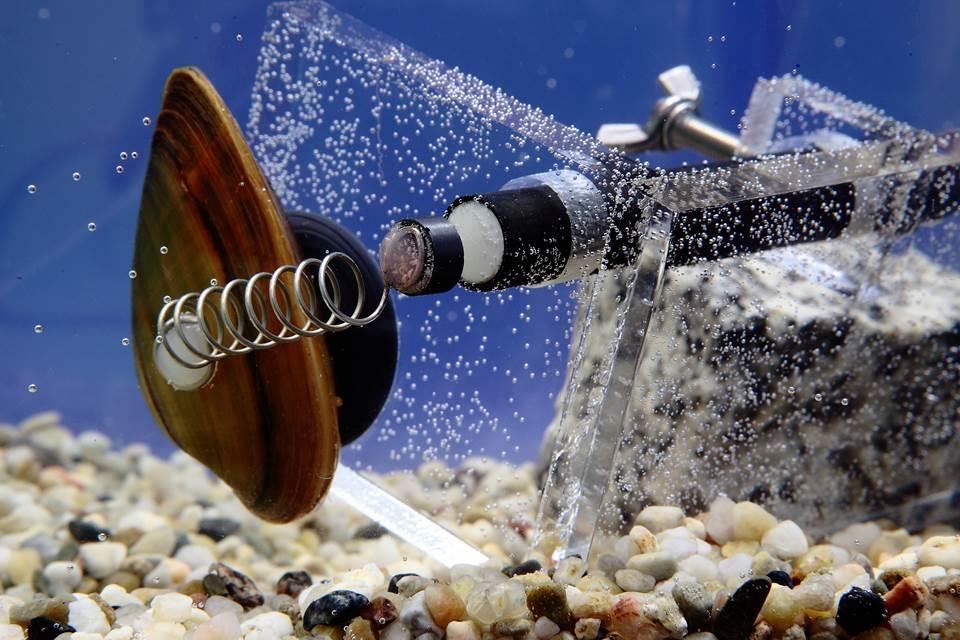 Wodkan Bełchatów Ujęcie wody
